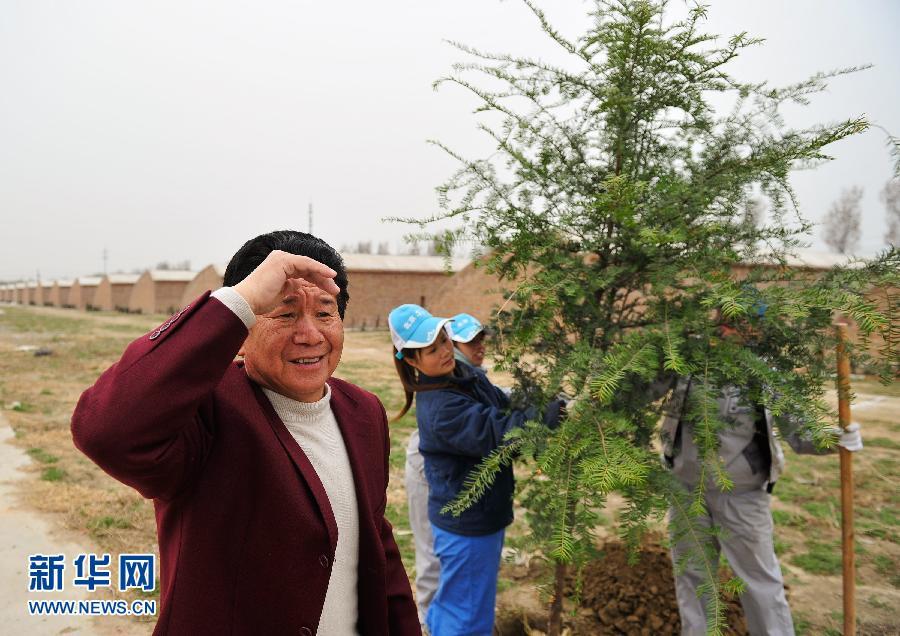 """""""植物活化石""""红豆杉落户北京"""