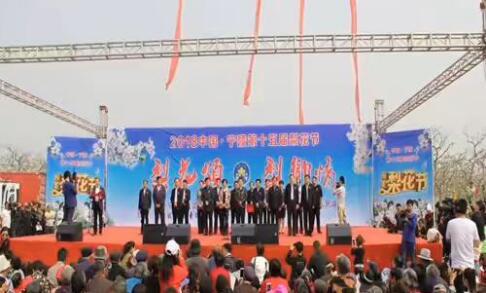中国河南省宁陵县第十五届梨花节盛大开幕