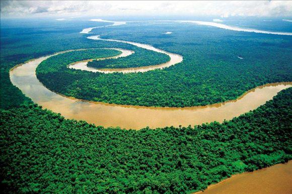 """凯发注册中华凯发注册文摘:""""地球之肺""""——亚马逊热带雨林"""
