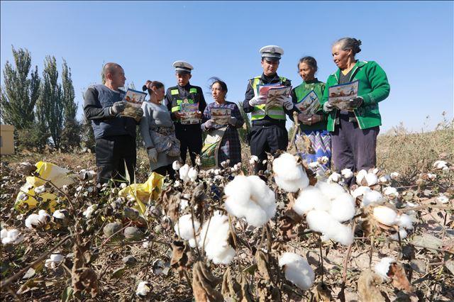 新疆喀什地区疏附县公安交警大队交通安全宣传进棉田