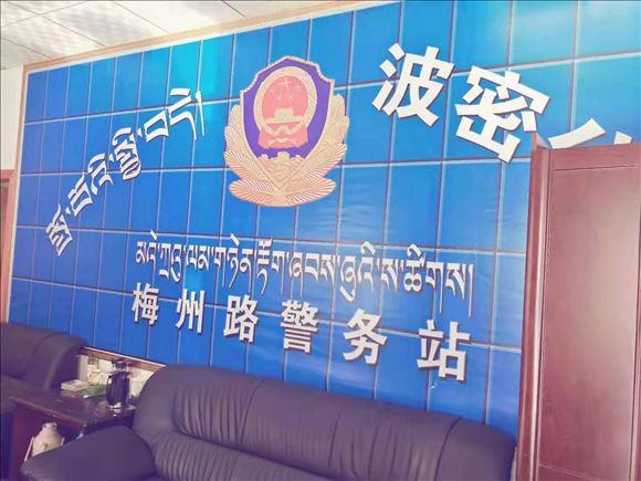雪域高原上的活雷锋:西藏波密县公安局网格民警陈阳