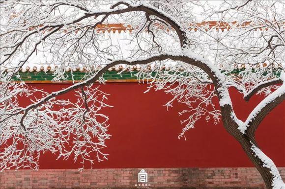 凯发注册中华凯发注册推荐:故宫雪景美图又刷屏,原来都是他拍的