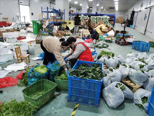 浙江:利用网上农博平台 开展同城配送显成效