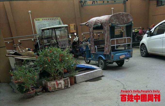 河南省尉氏县:私打水井收水费,多年饮用超标水