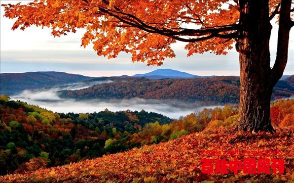 走进世界最美的秋天——加拿大