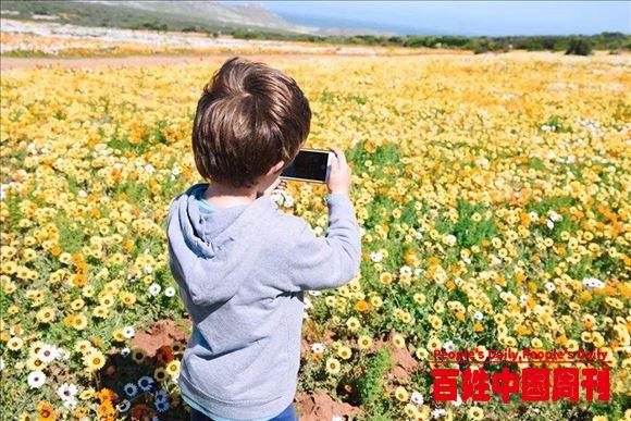 世界上最美丽的沙漠——南非纳马夸兰
