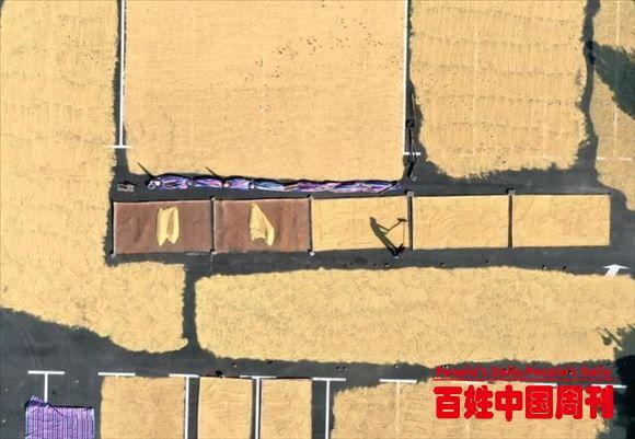 """农民日报刊发评论:重中之重有多""""重"""""""