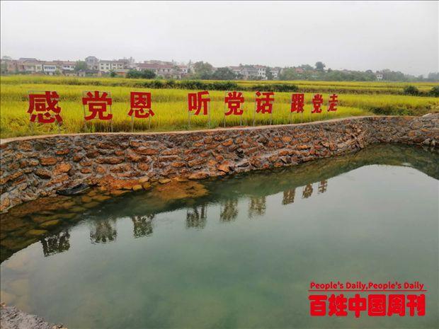 湖北黄梅:能人返乡,盘活落后村