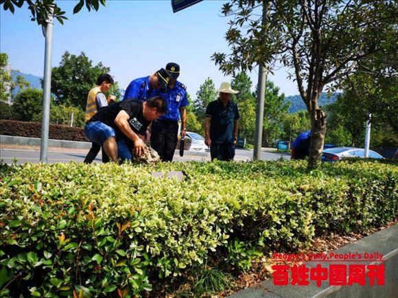 """浙江建德:城市管理""""马路办公""""提升城市环境""""整洁指数"""""""