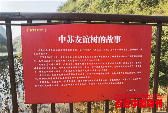 湖南省桃源县老干部网宣协会探寻历史遗迹