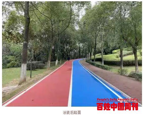 提颜值增气质——袁山公园主园路提质改造小记