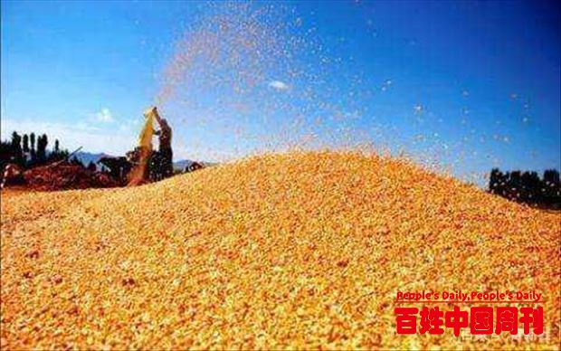 代表建议提高粮食收购价、防止土地撂荒,农业农村部:将加大种粮奖补