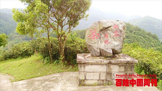 广东省梅州市国家3A级以上旅游景区数量居全省第二